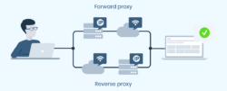 Forward and reverse proxy